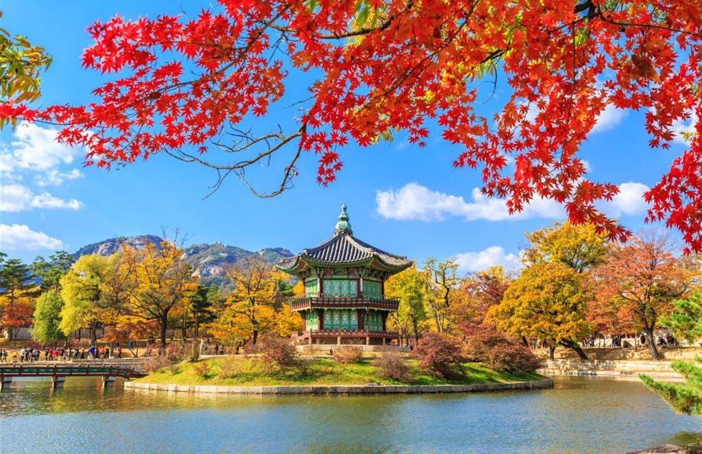 KOREYA.jpg